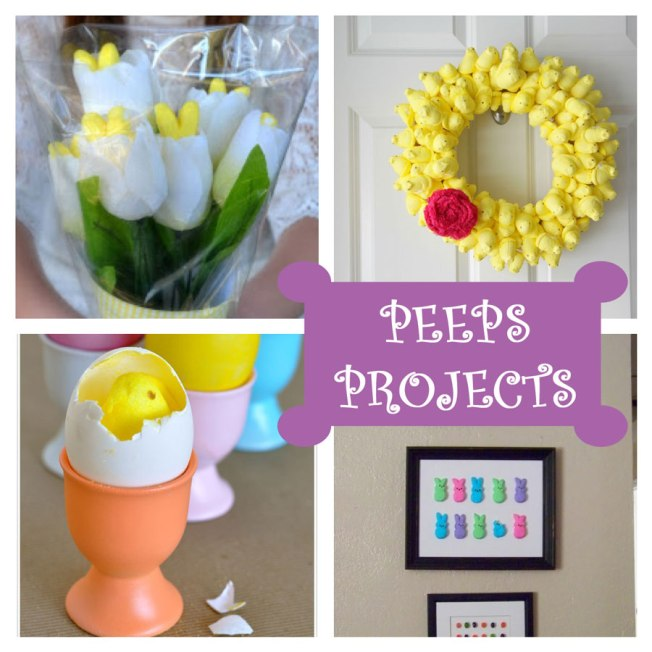 DIY-PEEPS-Projects